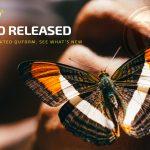 Quform 2.15.0 Released